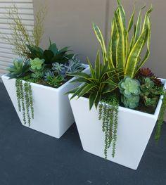 mixed-succulents-in-large-fiberglass-planters.jpg 3,256×3,640 pixels