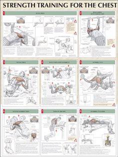Rutina de ejercicios para juntar el pecho - Ejercicios En Casa