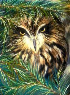 Eastern Screech Owl  Digital Print of My Original by MarthaHorman, $15.00