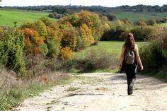 Quelque chose d'aussi simple que de sortir marcher chaque jour dans un décor naturel peut être très thérapeutique. Dans cet article, nous allons vous offrir toutes les informations sur cette pratique.