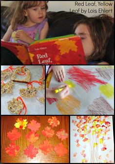Red Leaf, Yellow Leaf crafts and activities inspired by Lois Ehlert