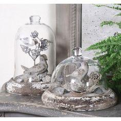 bird glass cloche dome