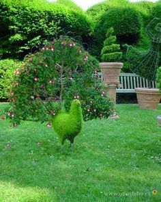 Garden art | Peacock Garden Art Pictures, Photos, and Images for Facebook, Tumblr ...