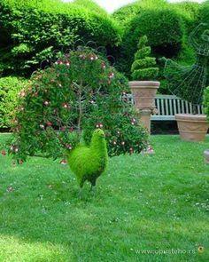 Garden art | Peacock Garden Art Pictures, Photos, and Images for Facebook, Tumblr ...