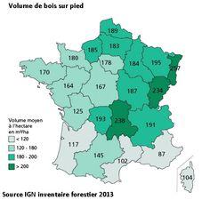 Bois sur pied France inventaire forestier IGN 2013. Portail habitat Picbleu