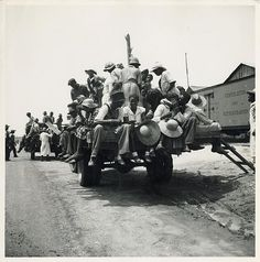 African American Farm Workers African American peach pickers being driven on a flatbed truck to the orchards, Muscella, Georgia, 1936.  Vintage African American photography courtesy of Black History Album, The Way We Were