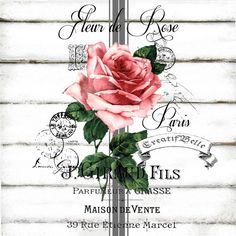 This is a digital download Fleur de Rose Large A4 size Digital download in 300dpi High Resolution JPG and PNG ready for A4 printing Watermark