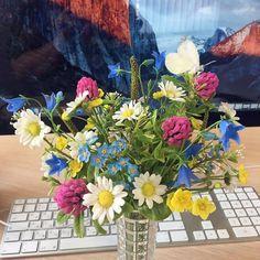 Лето уходит, а приятные воспоминания остаются. Вот так расположился букетик на рабочем столе. (Екатерина, спасибо большое за выбор и фото!)  Цветы из флористической полимерной глины.  #handmade #букет #бабочка #интерьер #офис #цветыполевые #цветыручнаяработа