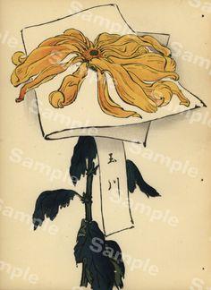 Lovely KORIN ukiyo-e Japanese woodblock original by Printvilla4you Antique Prints, Chrysanthemum, Rarity, Moose Art, This Book, Delicate, Japanese, The Originals, Antiques