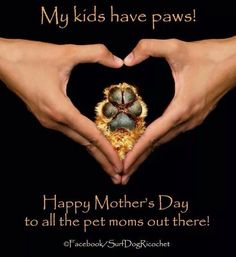 my kids have paws happy mothers day - Google Search