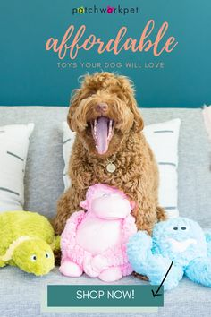 Our toys are high quality, cute, trendy, and AFFORDABLE! What more could you want? Shop NOW! Dog Toy Basket, Dog Toy Box, Cute Dog Toys, Best Dog Toys, Outdoor Dog Toys, Homemade Dog Toys, Dog Toy Storage, Interactive Dog Toys, Dog Christmas Gifts