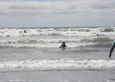 Quiet & Peaceful in Oakura Beach (Taranaki), New Plymouth District   Bookabach