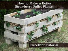 How to Make A Better Strawberry Planter Tutorial