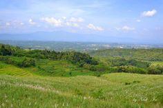 ladang tebu by Nduk_In  on 500px