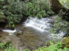 Davis creek Waterfall, Outdoor, Outdoors, Waterfalls, Outdoor Games, Rain, Outdoor Living