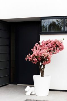 Modern straight round flowerpot from modern terraform homify - Bepflanzung Green Flowers, Pretty Flowers, Spring Flowers, White Blossom Tree, Blossom Trees, Small Gardens, Outdoor Gardens, Large Flower Pots, Landscape Materials