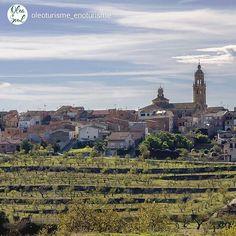 Nice postcard from #LaGranadella in #LesGarrigues, Km0 of olive oil tourism +INFO www.oleoturismegarrigues.cat www.oleasoul.com. Picture by @oleoturisme_enoturisme (Instagram)