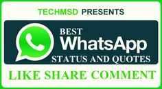 Top 111 Best Whatsapp Status