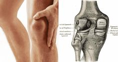 Aprenda a recuperar el cartílago deteriorado de sus caderas y rodillas - e-Consejos