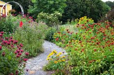 Christy's Plant-lover's garden,...see what she planted..