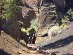 Red Mountain Trail (Flagstaff, AZ): Address, National Park Reviews - TripAdvisor