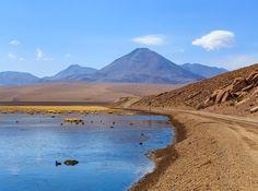 Vado Putana uma das belas paisagens do Atacama Chile. Conhecemos esse lugar no passeio do Geisers del Tatio que fizemos com a agência @aylluatacama. #NerdsNoAtacama #Atacama #AylluAtacama #Chile #VisitChile #landscape #nature #beautiful #beautifuldestinations #travel