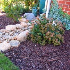 Dry Creek Beds-Solving Garden Problems dry creek bed as splash guard Drainage Solutions, Drainage Ideas, Downspout Ideas, Fresco, Gutter Drainage, Jardin Decor, Dry Creek Bed, Front Yard Landscaping, Landscaping Ideas