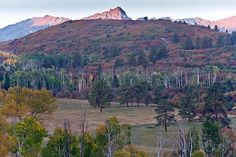 Sparring at Dawn: When viewed at a larger size, two elk are seen sparring at dawn below the peaks in the Sneffels Range of the San Juan Mountains in Southwest Colorado during the elk Rut.