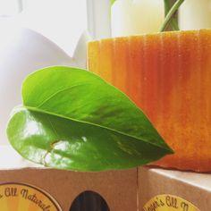 Organic Lemon Soap – Bath Sized Bars *SECONDS*
