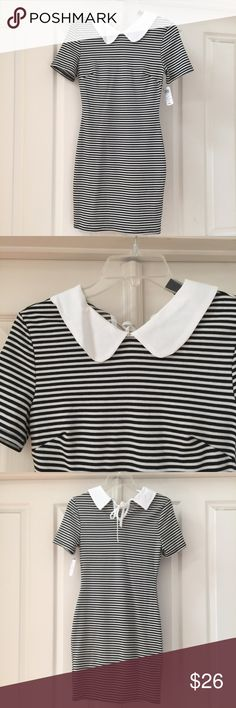 Peter pan collar black white striped fitted dress New with tags fitted striped dress! From windsor. Small WINDSOR Dresses