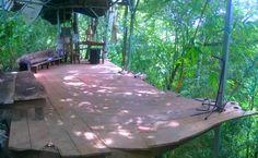piso de la casa del arbol- tree house floor