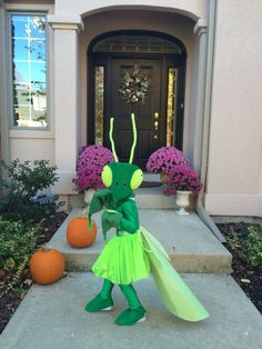 Are you looking for the right costume for your child already? Check out this Praying Mantis costume
