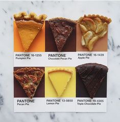 Pantone Pie by lucy litman