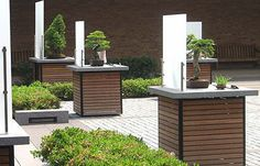 Chicago Botanic Garden Bonsai Courtyards Landscape Redesign