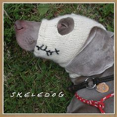 skeledog halloween snood/ mask by Jenna Greer pattern is for big dogs,  wonder if I could just modify an old sock for little under 3 pound puppy