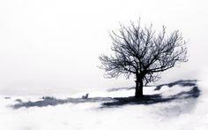 Mood emotion sad sorrow reflect time black white art artistic landscape trees grass bench surreal reflection dream alone wallpaper | 1920x1200 | 27082 | WallpaperUP