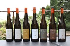 Weinverkostung - Riesling vom Weingut Sankt Annaberg -  #Weinverkostung #Weinempfehlung #Wein #Wine #Winetasting #Pfalz #Riesling #Weißwein