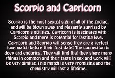 Love compatibility between ‪#‎Scorpio‬ and ‪#‎Capricorn‬ are superb. How many of you agree with this?