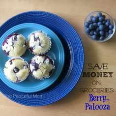 Save Money on Groceries with this summertime tip from The Peaceful Mom!  #savemoney  #summer