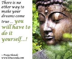There is no other way to make your dreams come true … you will have to do it yourself…!