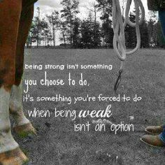 I love horses Rodeo Quotes, Equine Quotes, Equestrian Quotes, Cowboy Quotes, Cowgirl Quote, Hunting Quotes, Equestrian Problems, Great Quotes, Quotes To Live By