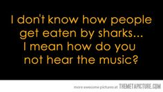 so wish I knew how to type out the theme song to Jaws.  you know the one... the one that's in your head now.  you're welcome