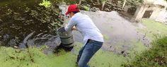 Diseñan planta potabilizadora de agua para comunidades rurales en Tabasco