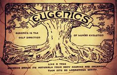 These eugenicists — the elite of society who funded this movement — only considered ''about 4%'' of all Americans to be ''high grade''.