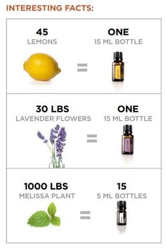 I put lemon oil in my water, daily. Love my lemon water! Fun facts on lemon, lavender and melissa essential oils!