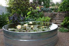 paradis express: Mosaic Gardens
