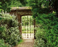 A secret garden beckons (Highclere Castle, the real Downton Abbey)