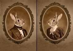 Mr. & Mrs Bunny portraits