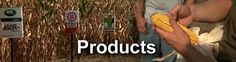Crops, certainly the most prominent and dominant factor in the human civilization, should be given the most concentration and focus by not only the farmers, but also by the agriculture authorities. #CropProtectionProductsTennessee