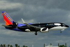 - Boeing - Southwest Airlines (SHAMU - SeaWorld - colours) at Ft. Southwest Airlines, Commercial Aircraft, Sea World, Beautiful Paintings, Airplane, Jet, Aviation, Random, Aircraft